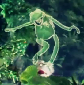 kermit, bitch i'm a monster, muppets video