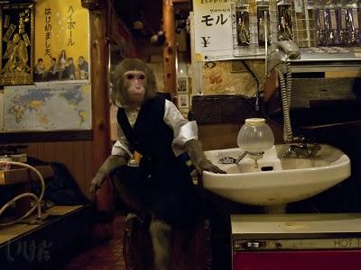 unicorn booty, gay blog, gay news, japanese monkey waitress