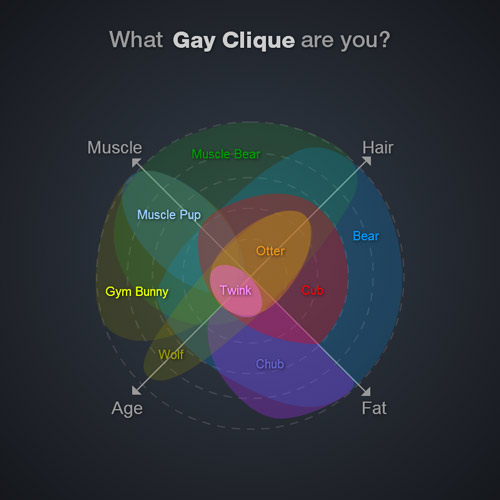gay blog: gay radar, what kind of gay are you, muscle, fat, hair, age, twink, otter, gym bunny, cub, gay news