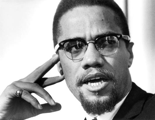 gay blog, gay news, malcolm x was gay, manning marable, bisexual
