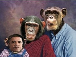 CA Republican Official Sends Racist Email of Obama As Chimp