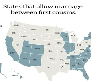 infographic, incest, marriage infographic, gay infographic, gay marriage