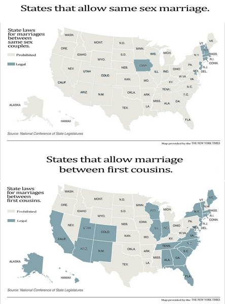 infographic, incest, gay infographic, marriage infographic