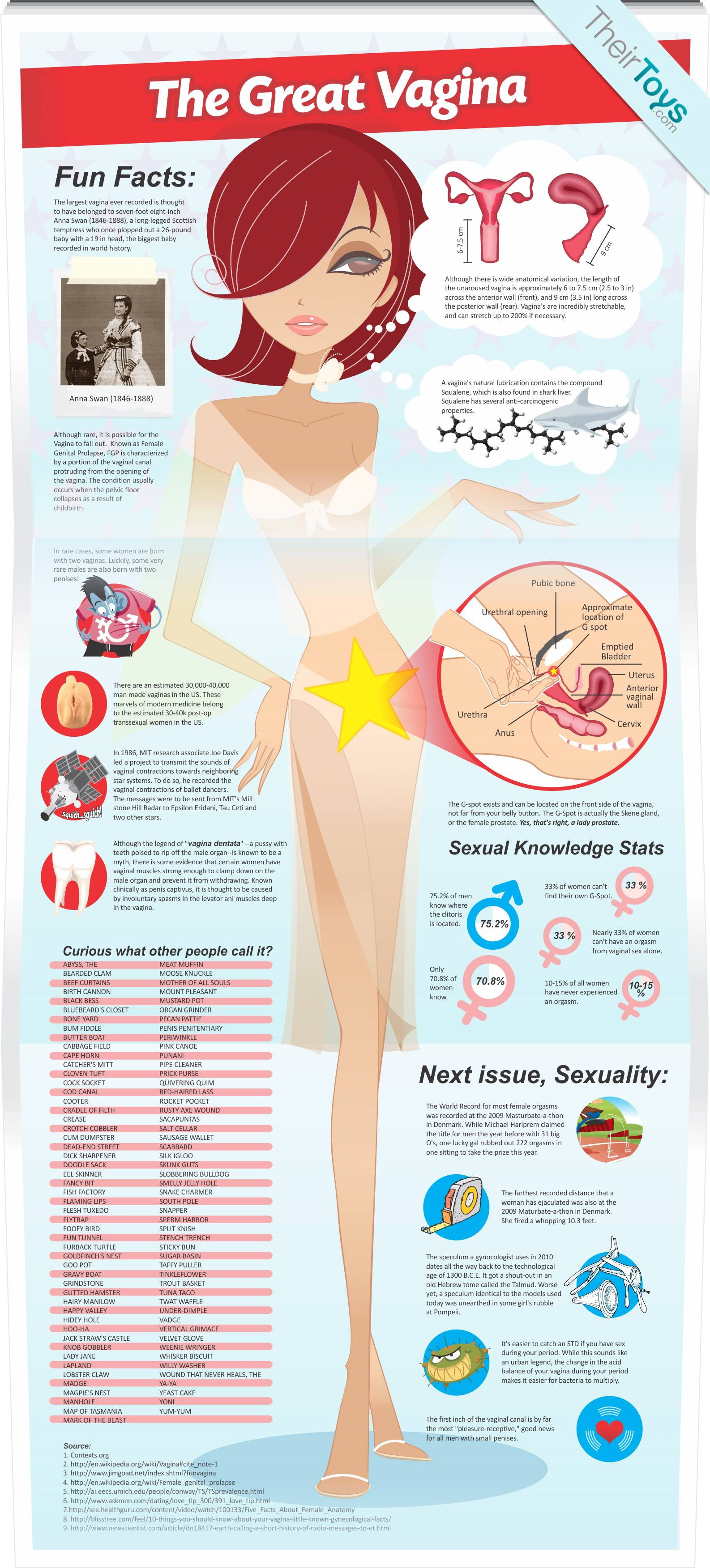 vagina infographic, infographic, the great vagina, vaginas infographic