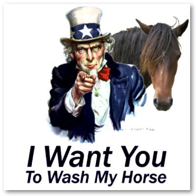 unicorn booty hiring, unicorn booty jobs, unicorn booty bloggers