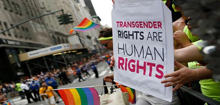 transgender rights are human rights, trans, rainbow flag, protest, parade, sign,