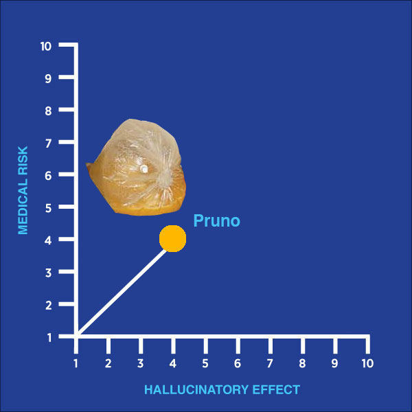 hallucinatory effect, medical risk, drug of the week, pruno, prison wine