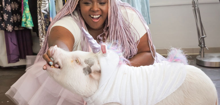 Hamlet The Piggy Will Make All Your Unicorn Dreams Come True