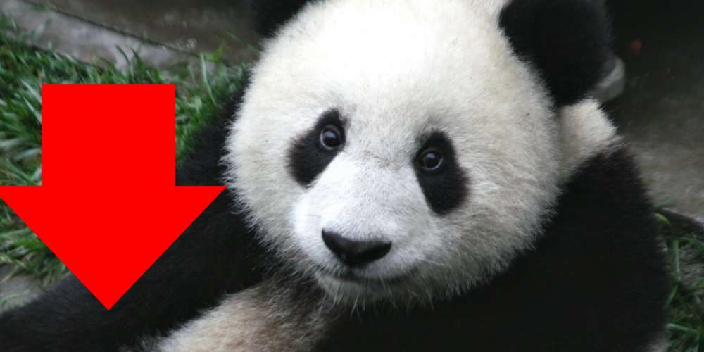 China's Stock Market Plummet (Explained With Adorable Panda Videos!)