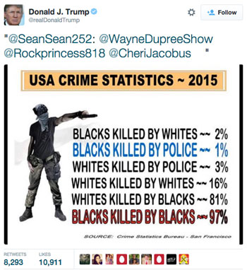 neo-nazi, Donald Trump, racist, black murder statistics, infographic