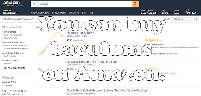 amazon, baculum, penis bone, weird facts, sex