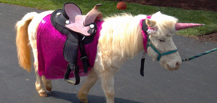 Your Mom Was Wrong: Unicorns ARE Real!