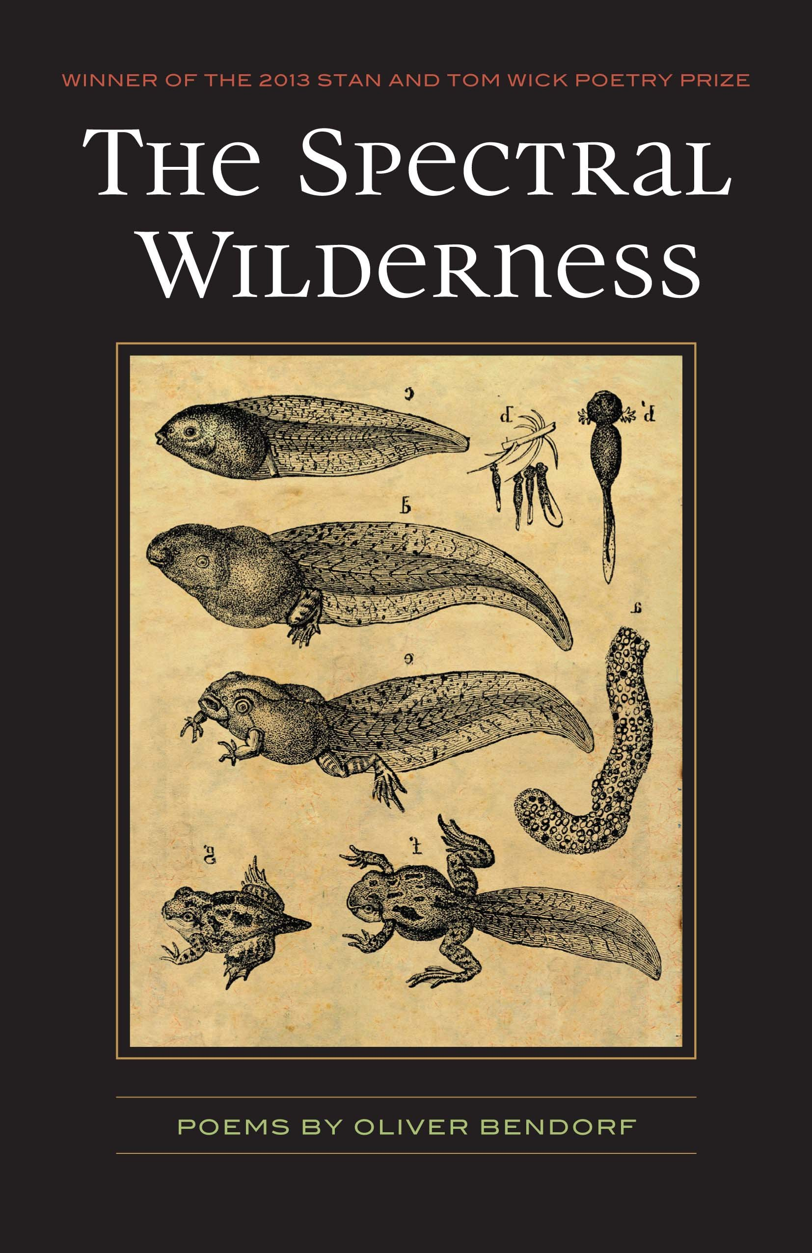 The Spectral Wilderness by Oliver Bendorf