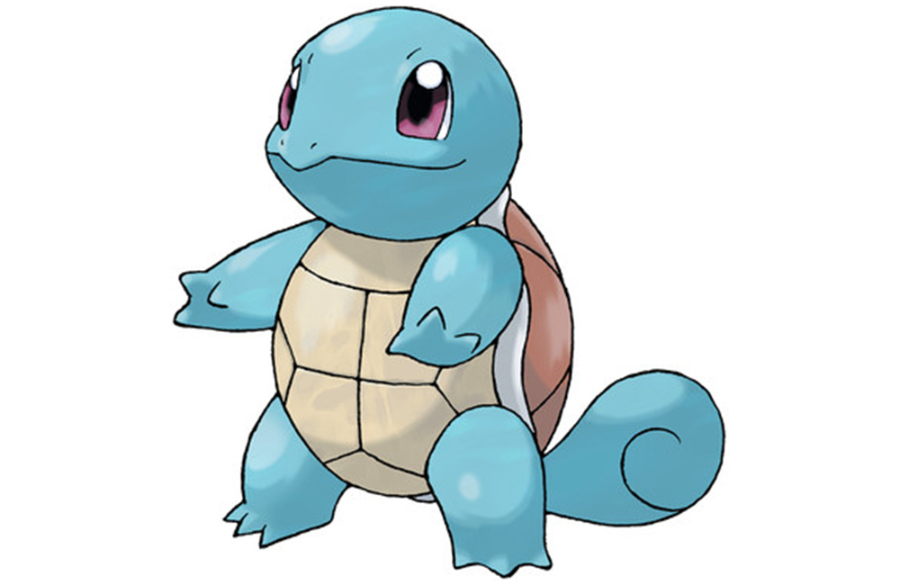 gay pokemon squirtle