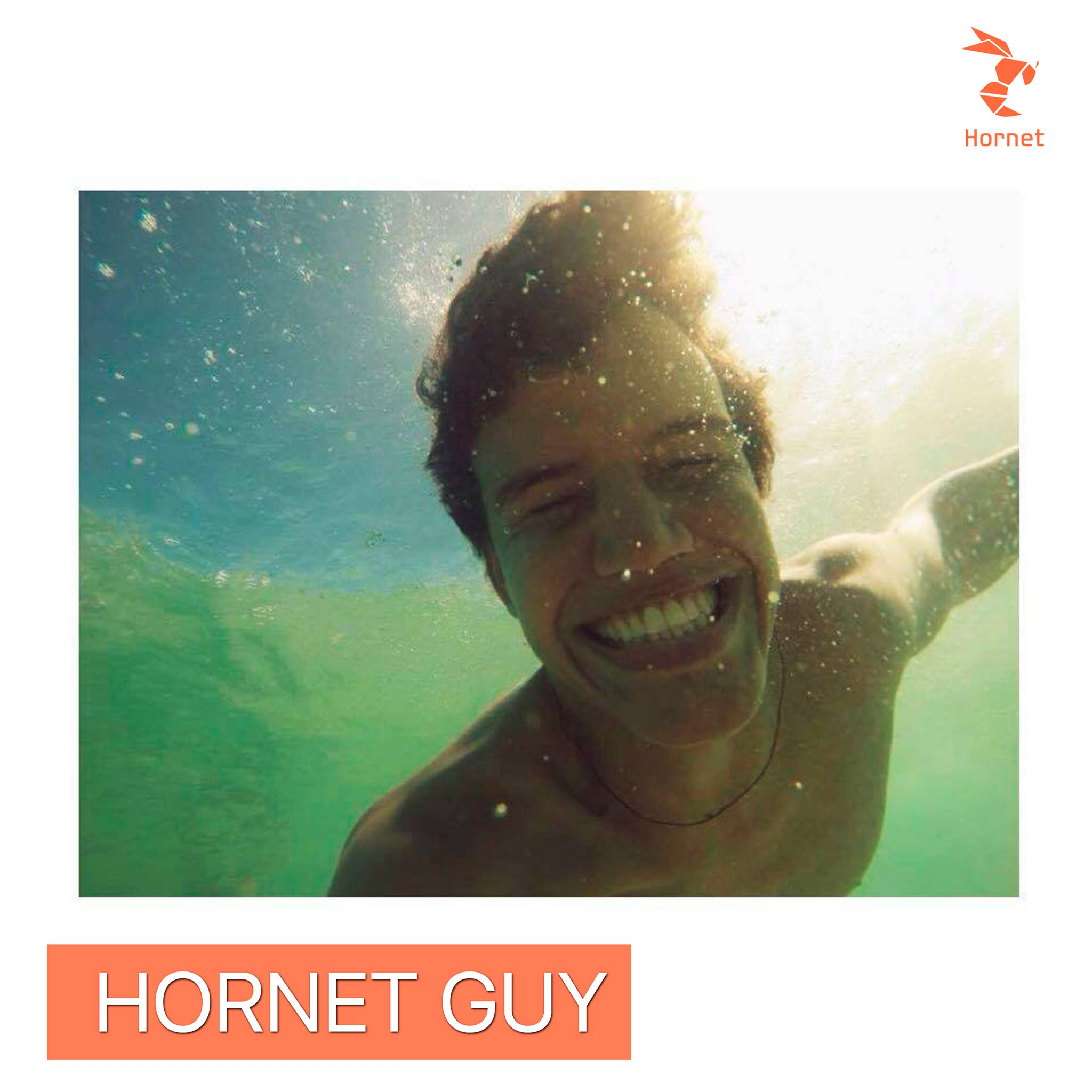 hornet guy