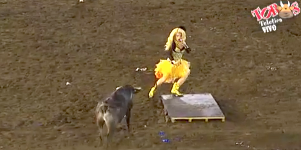 Drag Queens and Bulls Don't Mix, and This Video Proves It