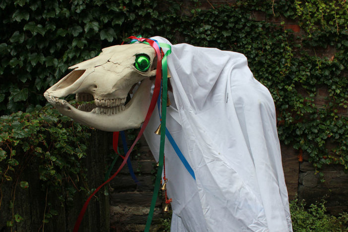 Mari Lwyd, Grey Horse, skull, Christmas, Yule, holiday