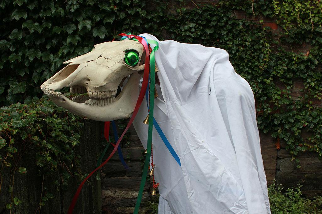 Mari Lwyd, Grey Horse, skull, Christmas, Yule, holiday
