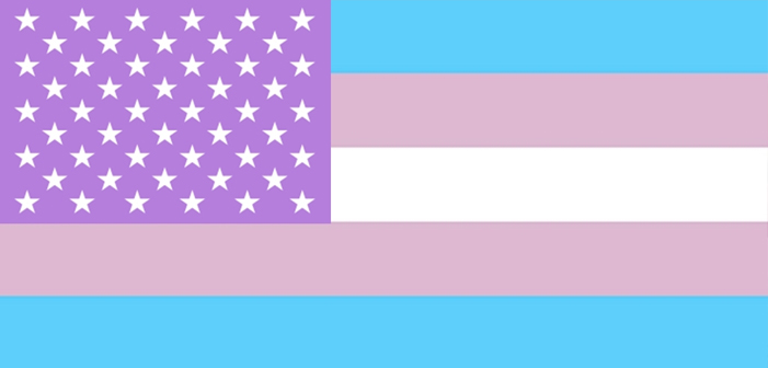 5 Must-Know Findings from the Largest Ever Survey of Trans Americans