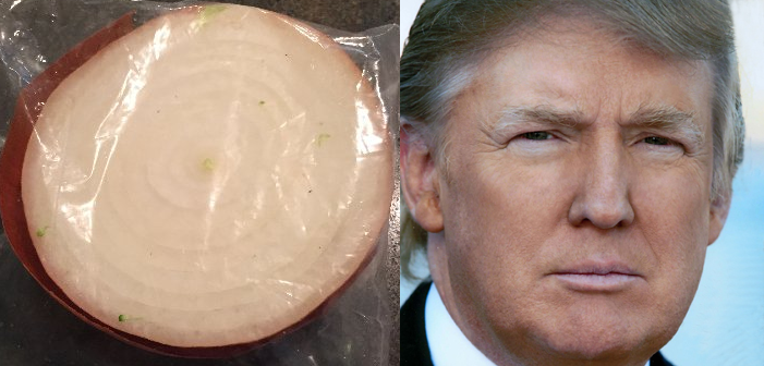 Can Half an Onion in a Bag Get More Twitter Followers than Donald Trump?
