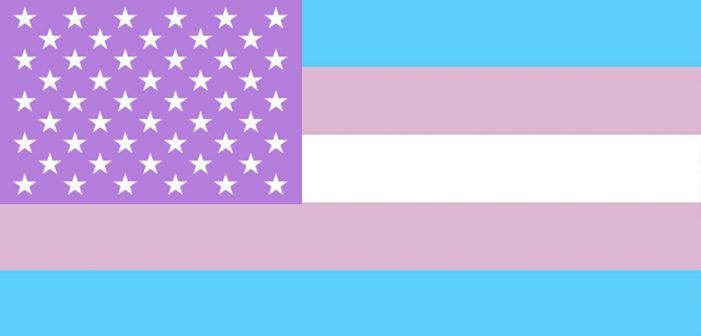 跨性別調查