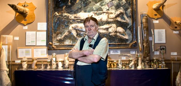 Исландский музей фаллосов — это уникальный памятник славы пенису