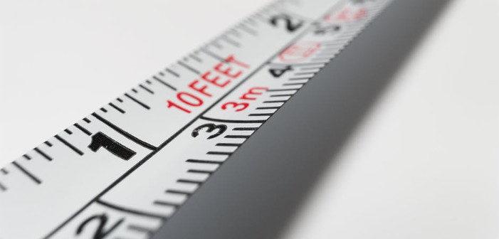 penis length