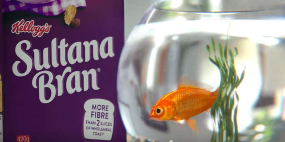 Why Is This Kellogg's Cereal Ad with a 'Gay' Goldfish Offending People? (Video)
