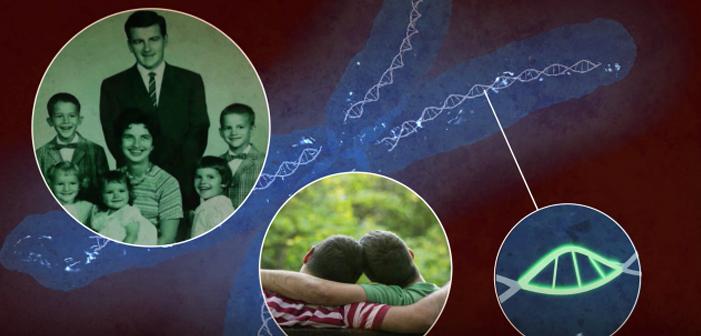 Olvídense del Gen Gay – La Ciencia Tiene una Nueva Explicación para la Homosexualidad