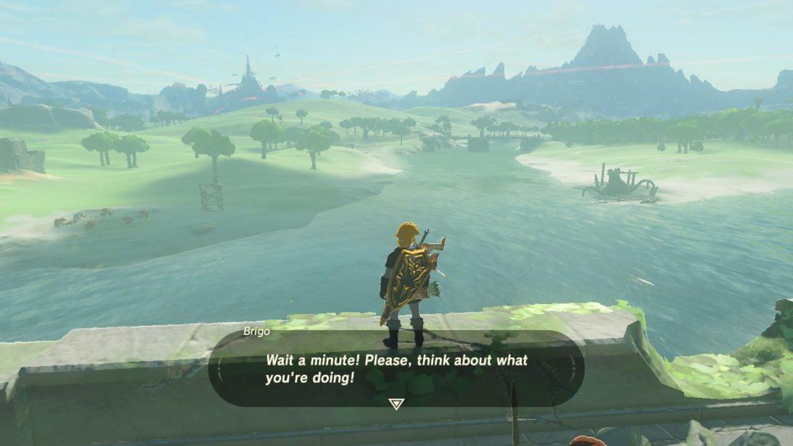Zelda Suicide wait a minute