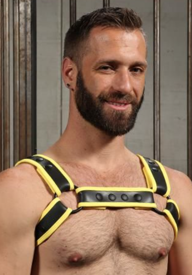 leather harness mr s