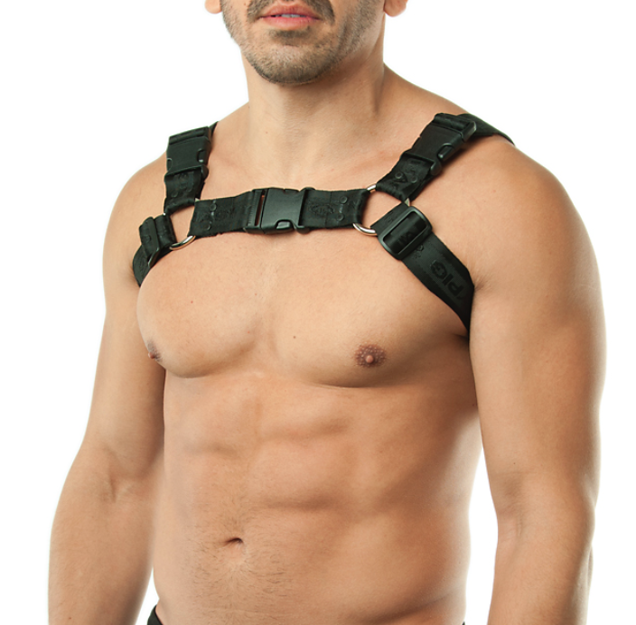 leather harness nasty pig