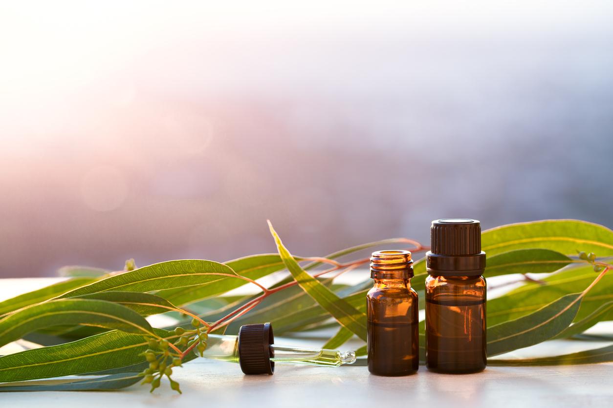 grooming product ingredients eucalyptus