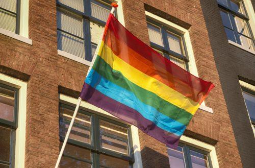 rainbow flag petition