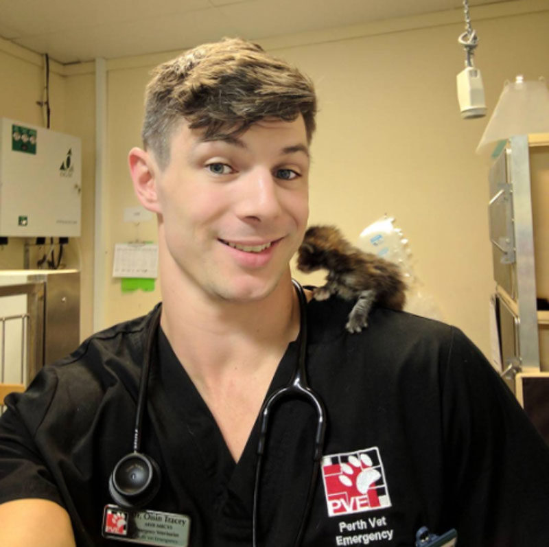Dr Oisín Tracey, Pawsome Doctor, sexy vet 11