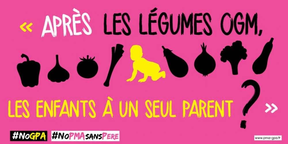La «Manif pour tous» compare les bébés conçus par PMA à des légumes OGM