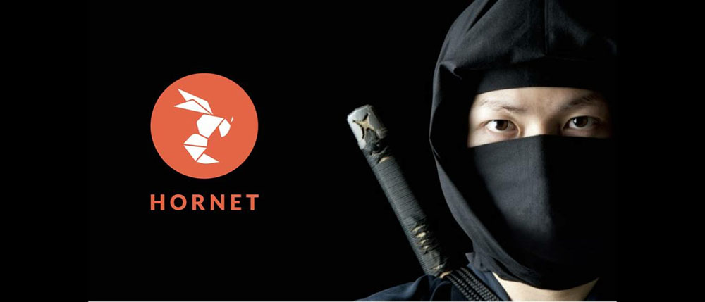 The 'Hornet Ninjas' Project Is Changing the Way Gay Men Navigate Taiwan