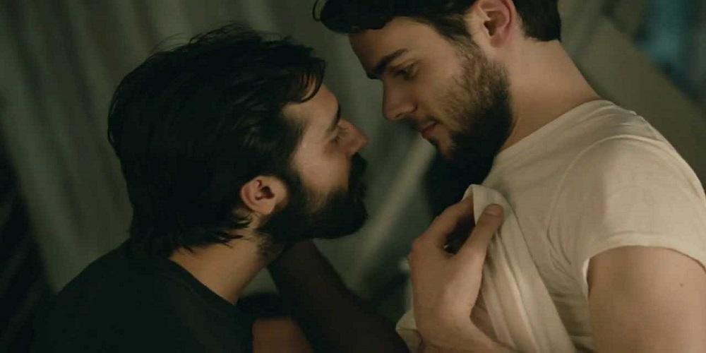 ¿Qué es la Androfilia y en Qué se Diferencia con la Homosexualidad?