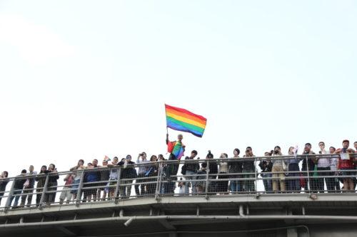 LGBT Pride Hornet