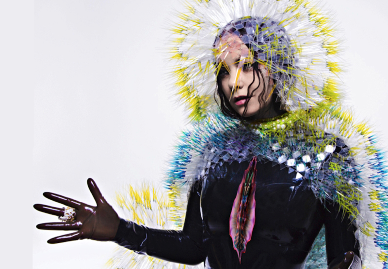 bjork vulnicura cover art
