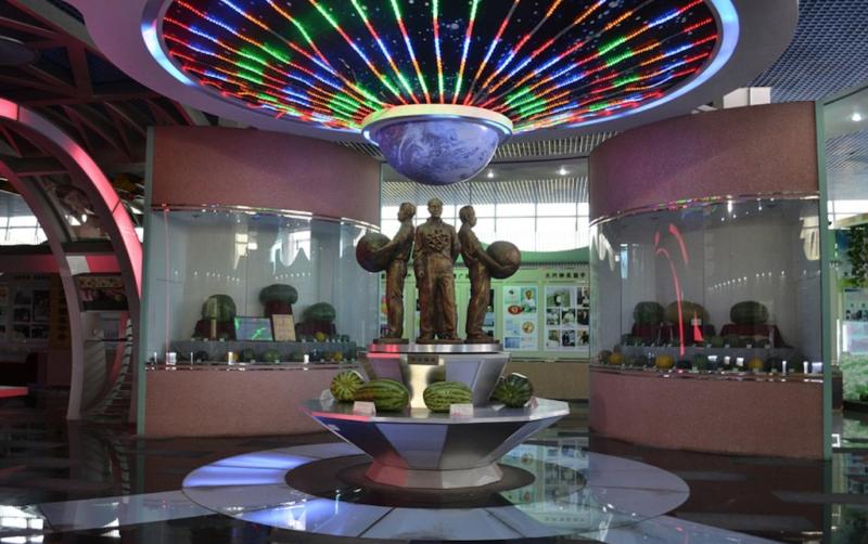 watermelon museum beijing