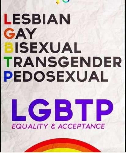 LGBT Pedophilia Flyer False