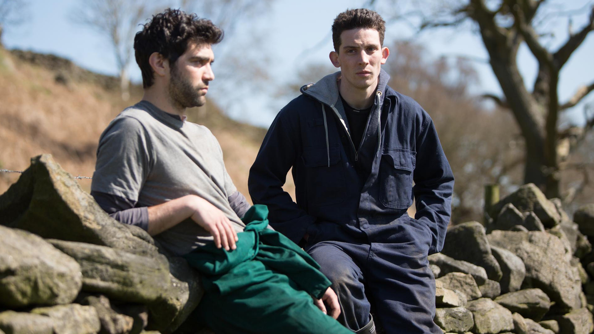 gay films god's own country