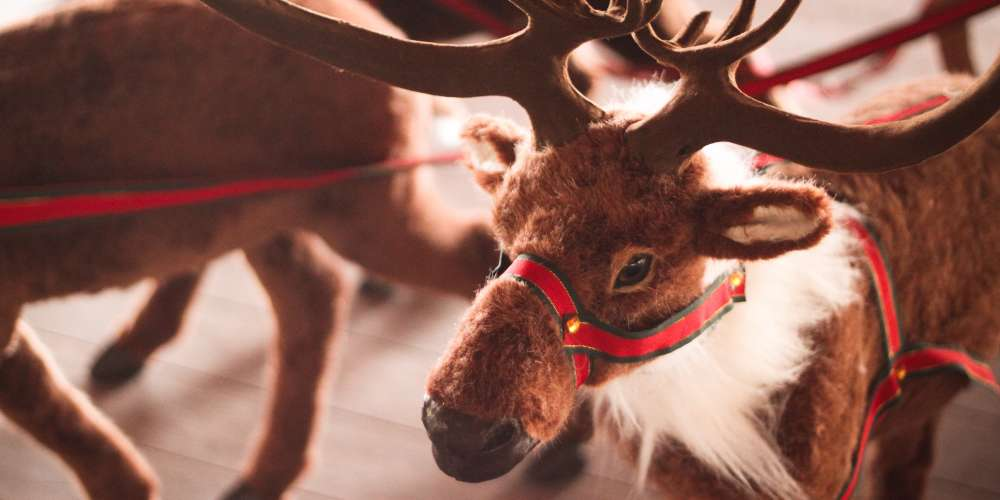 Middle School Accidentally Promotes 'Christmas Sweater Day' With Image of Reindeer Orgy