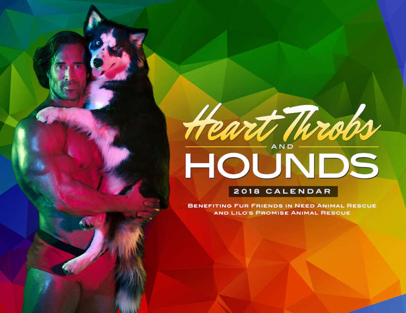 sexy calendar heart throbs and hounds