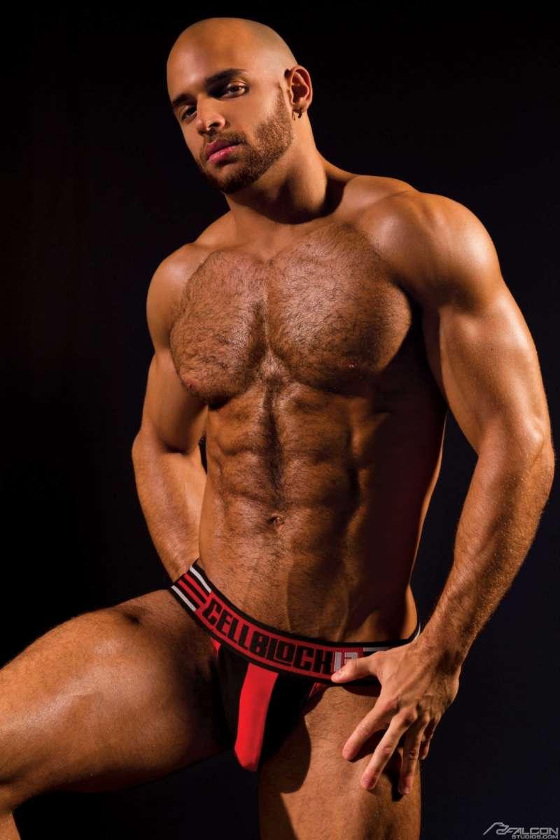 political gay porn stars 02, Sean Zevran