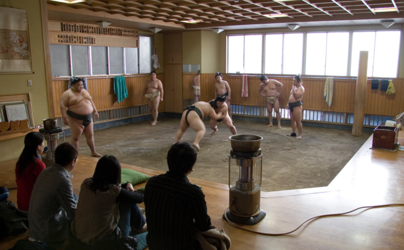 gay tokyo hornet guide sumo stable  гей токио