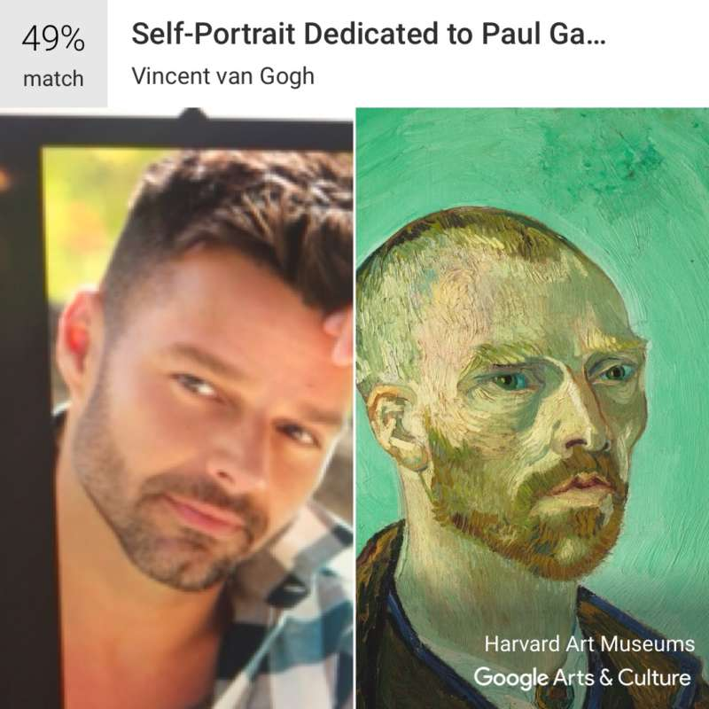 google arts and culture ricky martin