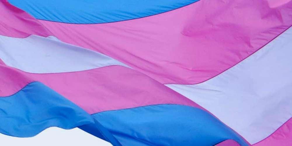 Confira eventos do Dia Nacional da Visibilidade Trans em São Paulo