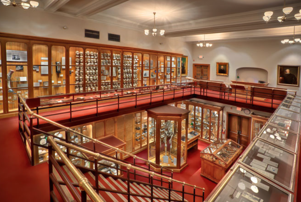 philadelphia guide mutter museum